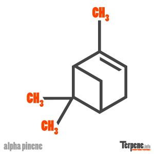 Alpha Pinene Molecule