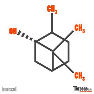 Borneol Molecule