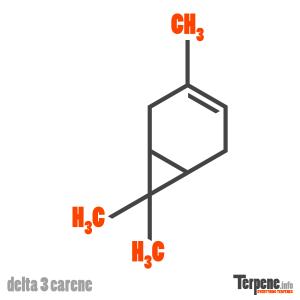 Delta 3 Carene Molecule