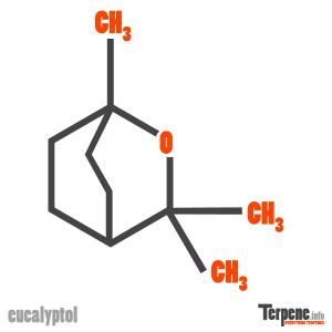Eucalyptol Molecule