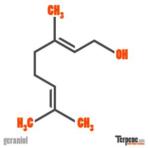Geraniol Molecule