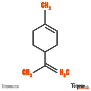 Limonene Molecule