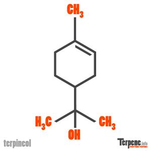 Terpineol Molecule